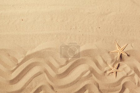 sand pattern with sea stars on beach