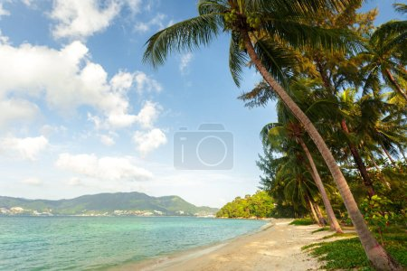Photo for Sea. Tropical Paradise. Travel concept - Royalty Free Image