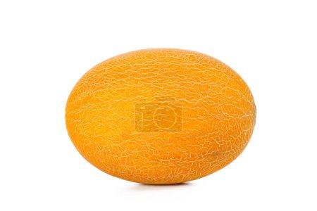 Photo pour Melon isolé sur blanc - image libre de droit