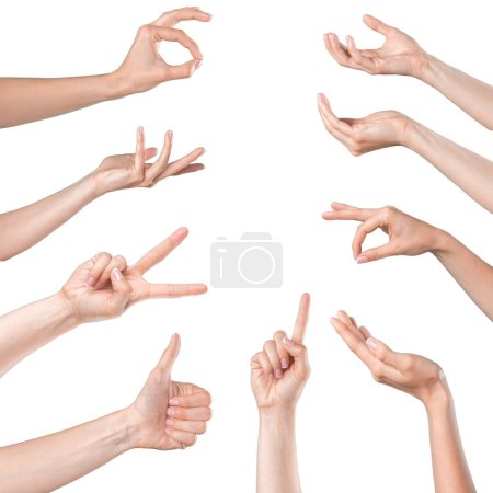 collage of Women Hands gesturing on white background