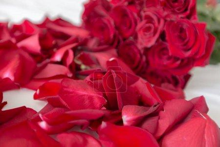 Photo pour Roses rouges sur un lit - image libre de droit