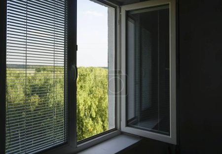 opened  window with jalousie, blind at the summer