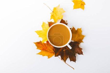 Photo pour Vue de dessus des feuilles d'automne et tasse de café isolé sur blanc - image libre de droit
