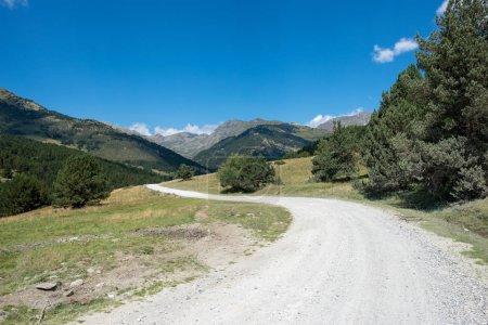 Photo pour Route vers Montgarri dans les montagnes de la vallée d'Aran en été, Espagne - image libre de droit