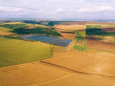 Foto aérea de dron de paisaje increíble con cultivos y lago, agr