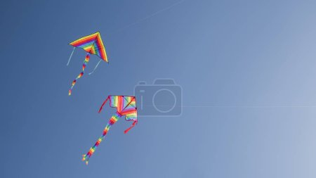 Two kites soar in the blue cloudless sky....