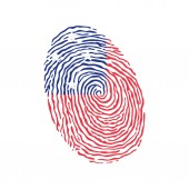 Fingerprint vector colored with the national flag of Samoa