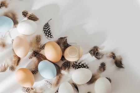 Photo pour Brun de couleur naturel, cailles et oeufs blancs avec les sunlights. Compositions en couleurs pastel. Consept de Pâques. Vue plate Lapointe, top - image libre de droit