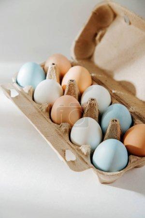 Photo pour Naturels bruns et blancs oeufs colorés dans la boîte à oeufs avec les sunlights... Compositions en couleurs pastel. Consept de Pâques. - image libre de droit