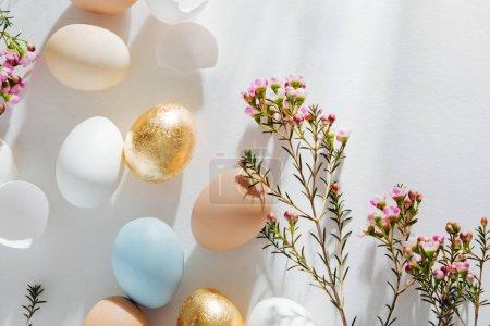 Photo pour Naturel d'oeufs colorés et de fleurs avec des sunlights matin. Élégantes Compositions minimales dans des couleurs pastel. Concept de Pâques. - image libre de droit