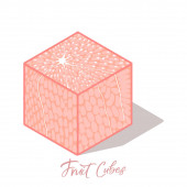 Isometric grape  fruit cube with shadow Colorful vector food illustration for healthy food cafe restaurant fruits and grocery market