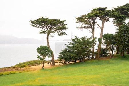 Golden Gate park in San