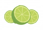 Sliced green lime icon vector