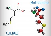 Methionine l- methionine Met  M essential amino acid molecule Structural chemical formula and molecule model