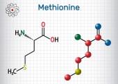 Methionine (l- methionine Met  M) essential amino acid molecule  Sheet of paper in a cage Structural chemical formula and molecule model