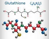 Glutathione (GSH) molecule is an important antioxidant in plants animals and some bacteria Structural chemical formula and molecule model