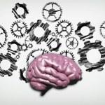 Brain against a white wall drawn with engine gear ...