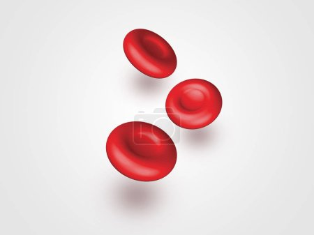 Photo pour Globules rouges isolés - image libre de droit