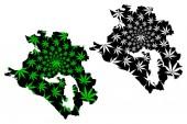 Krasnodar Krai (Russia Subjects of the Russian Federation Krais of Russia) map is designed cannabis leaf green and black  Kuban map made of marijuana (marihuanaTHC) foliage