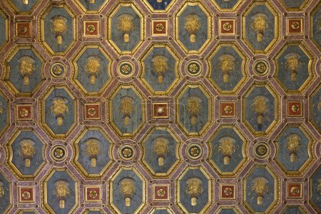 Ceiling of Ducal palace were executed by famous pa...