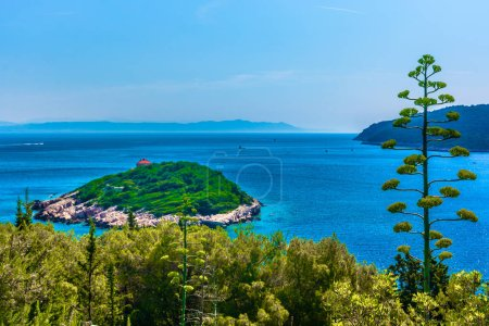 Mediterranean island summer landscape. / Scenic view at small picturesque island in front of Vis town, Croatia travel destinations.
