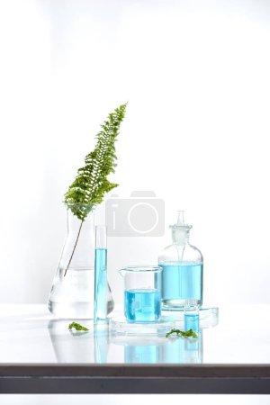 Photo pour Phytothérapie verrerie naturelle biologique et scientifique, concept de recherche et développement . - image libre de droit