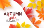 Autumn sale poster with colorful leaves  Vector illustration for banners posters email and newsletter designs ads coupons promotional material