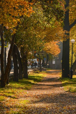 Photo for Walk along the autumn Kamenoostrovsky prospect in the city of St. Petersburg. - Royalty Free Image