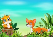 Cartoon of the nature scene with two fox