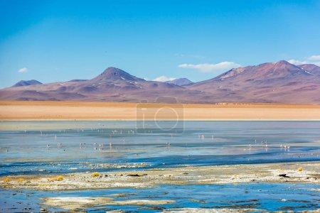 Photo pour Scénario de paysage incroyable en Bolivie, Amérique du Sud - image libre de droit