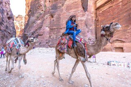 Photo pour Petra, Jordanie - 15 février 2018 - Un chameau dans les temples de Petra en Jordanie - image libre de droit