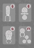 Five different nanobots Each nanorobot consists of organic transparent membrane and microchips and be designed for investigation of state of different organs