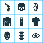 Part icons set with eye finger breast and other skeleton elements Isolated vector illustration part icons