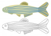 Fish cartoon Coloring book Activity for children