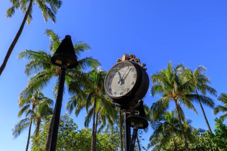Photo for Honolulu, Hawaii - Dec 23, 2018 : Old victorian era clock with palm coconut trees at Waikiki Beach - Royalty Free Image