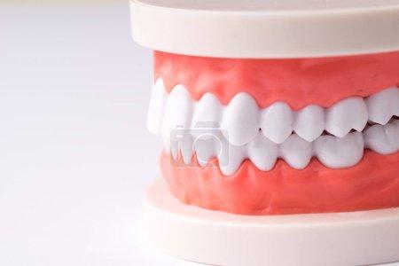 Set of Dentist's equipment tools, denture showing ...