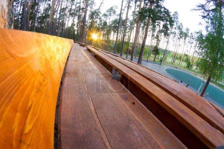 Photo pour Staduim en bois dans la forêt. Grand staduim en stationnement - image libre de droit