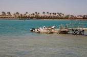 a small boat near the wooden pier of the Red Sea