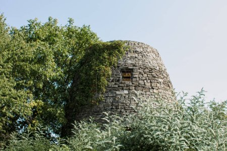 Photo pour High stone tower with window in the forest - image libre de droit