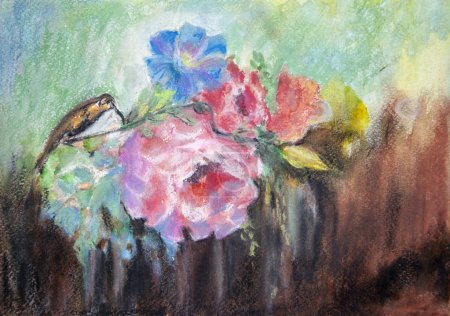 Drawing with watercolor, bird of hummingbirds on f...