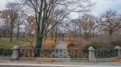 """Постер, картина, фотообои """"Расслабляющей ходьбы через Центральный парк Нью-Йорк"""""""