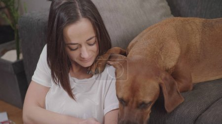 Photo pour Jeune femme animaux son chien tout en vous relaxant dans le salon - image libre de droit
