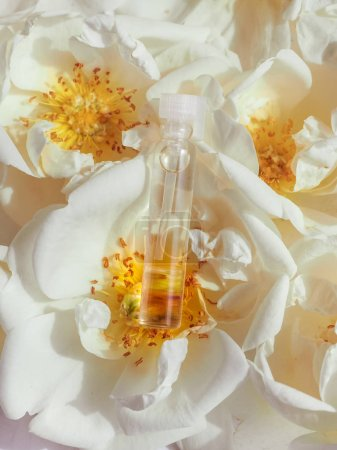 Essence of rose flowers in a mini bottle. Aromatherapy for relaxation.