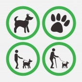dog friendly signs walks with dogs man helper vector image