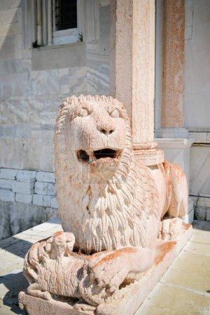 Marble lion of the protiro of the Duomo of Ancona