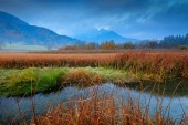 "Постер, картина, фотообои ""Zelenci lake natural reserve, Kranjska Gora, Slovenia. Foggy Triglav Alps with forest, travel in nature. Beautiful sunrise with blue sky, green nature. Landscape in Slovenia, nature in Europe. """