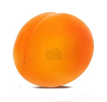 Photo pour Abricot isolé sur fond blanc - image libre de droit