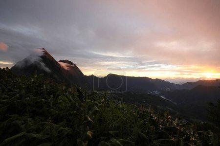 Photo pour Beaucoup d'arbres verts et des buissons, au loin, vous pouvez voir un grand volcan - image libre de droit