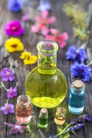 Photo pour Huiles essentielles et herbes médicales fleurs - image libre de droit