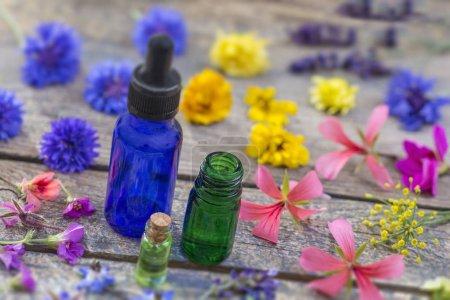 Photo pour Huiles essentielles et herbes de fleurs médicales - image libre de droit